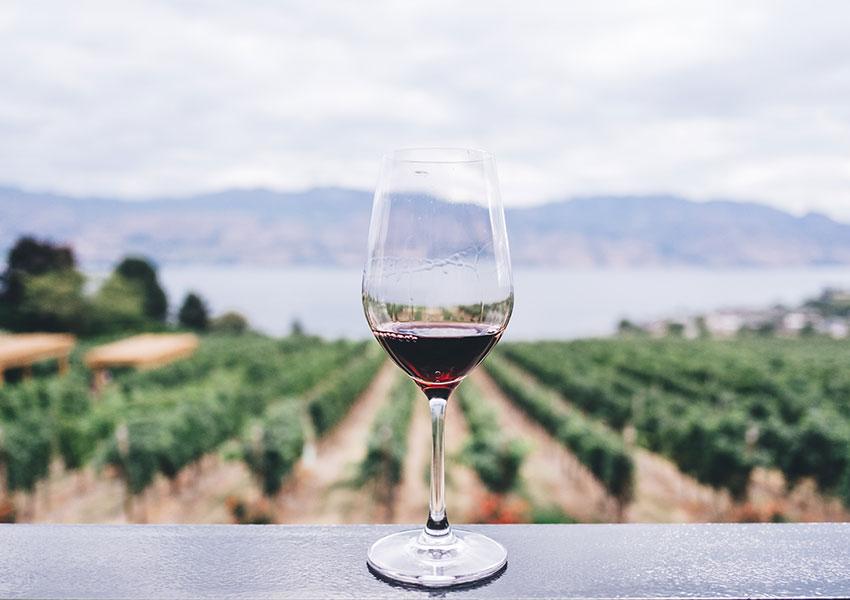 Brindemos con vino
